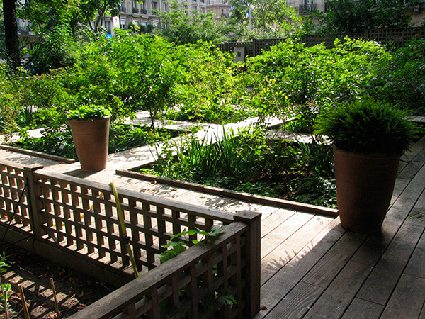 Healing and terapeutic gardens in hospital's history
